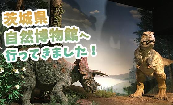 茨城県自然博物館へ行ってきました