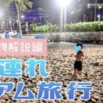 30代夫婦と幼児の海外旅行持ち物解説【4歳子連れグアム旅行】02